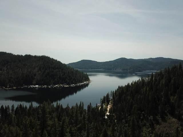 4100 N Deer Lake Rd, Loon Lake, WA 99148 (#202117024) :: Freedom Real Estate Group
