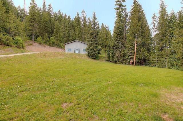 4329 E Deer Lake Rd, Loon Lake, WA 99148 (#202117064) :: Five Star Real Estate Group