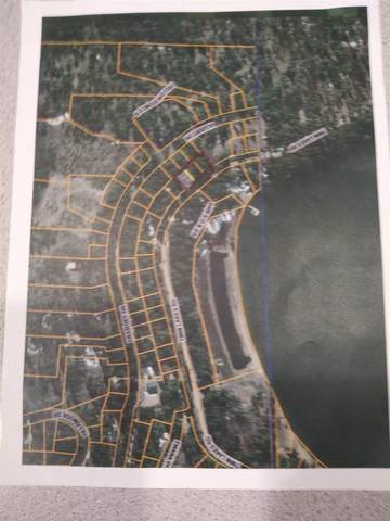 000 South Twin Lakes Rd Rd, Inchelium, WA 99138 (#202117068) :: Bernadette Pillar Real Estate
