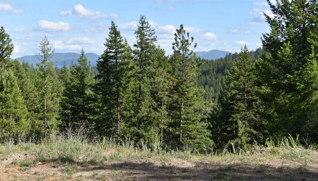 14408 N Mountain View Ln, Newman Lake, WA 99025 (#202117071) :: The Hardie Group