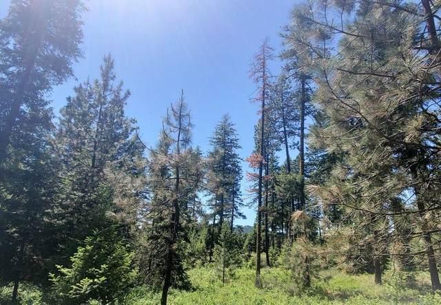 4571 Lessig Lot G Rd, Hunters, WA 99137 (#202117277) :: Top Spokane Real Estate