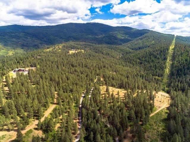 160 Acres E Saltese Lake Rd, Spokane, WA 99016 (#202117278) :: Elizabeth Boykin | Keller Williams Spokane