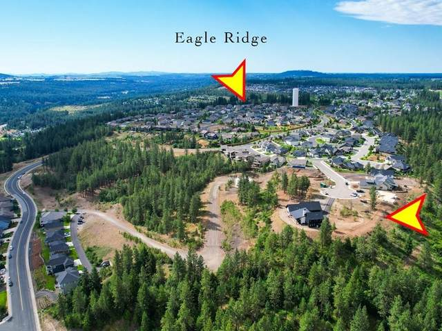 5204 S Falcon Point Ct, Spokane, WA 99224 (#202117282) :: Bernadette Pillar Real Estate