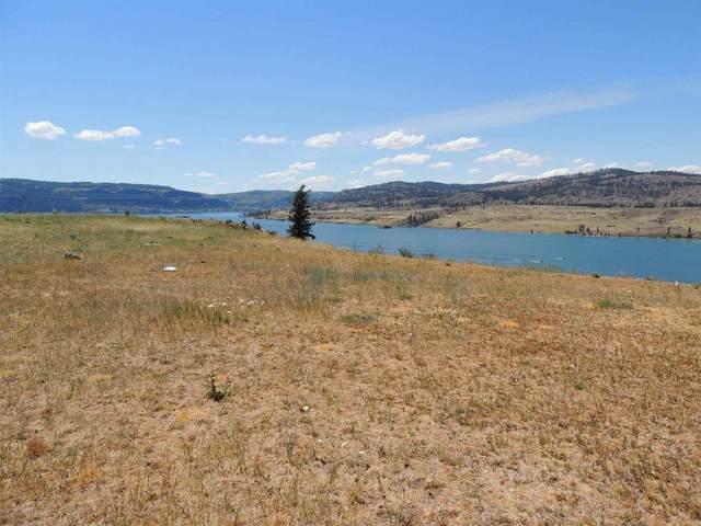 41215 Harbor View Dr N, Deer Meadows, WA 99122 (#202117363) :: Bernadette Pillar Real Estate