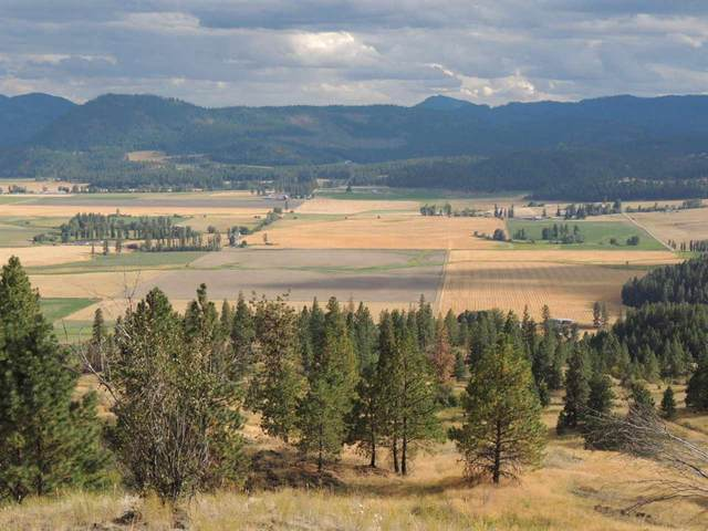 000 Marble Valley Basin Rd, Chewelah, WA 99109 (#202117370) :: Northwest Professional Real Estate
