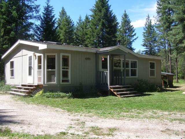 4191 Bussard Lake Rd, Loon Lake, WA 99148 (#202117494) :: Parrish Real Estate Group LLC