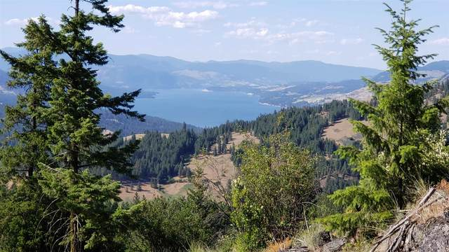 40XX Bisell Rd, Hunters, WA 99157 (#202117528) :: Prime Real Estate Group
