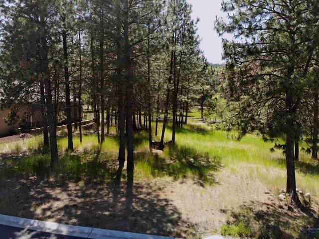 12011 N Osprey Ln, Spokane, WA 99218 (#202117530) :: Prime Real Estate Group