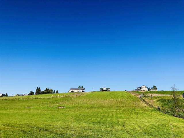 447 S Bluff St, Tekoa, WA 99033 (#202117543) :: Elizabeth Boykin | Keller Williams Spokane