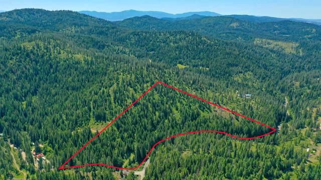 XXXX Mt. Spokane Park Dr, Mead, WA 99021 (#202117560) :: The Hardie Group