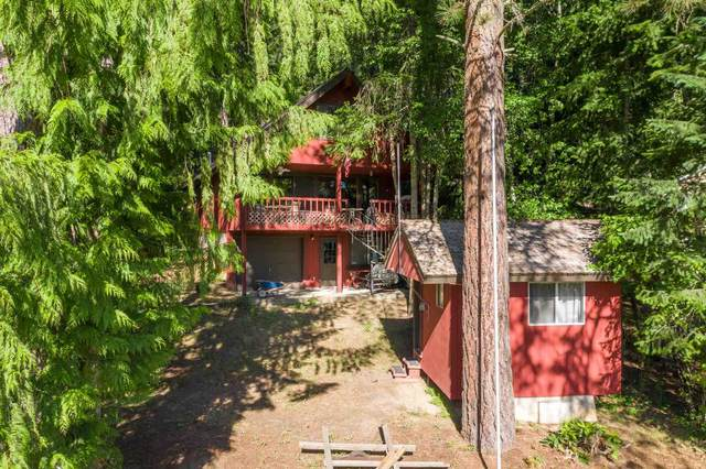 4088 Tamarack Bay Rd, Loon Lake, WA 99148 (#202117574) :: Freedom Real Estate Group
