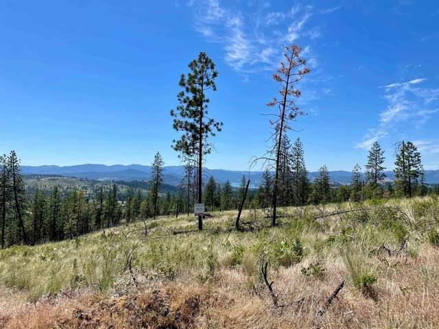 Coyote Canyon Rd, Fruitland, WA 99129 (#202117615) :: The Spokane Home Guy Group