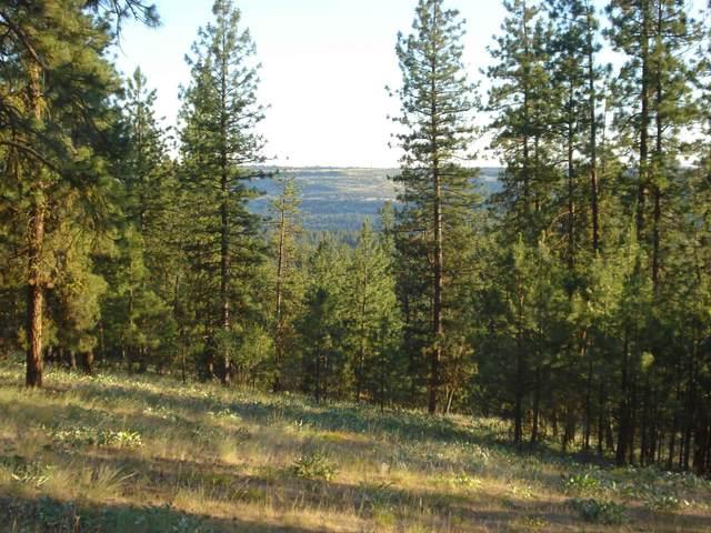6548 Summerlin Way, Nine Mile Falls, WA 99026 (#202117640) :: Elizabeth Boykin | Keller Williams Spokane