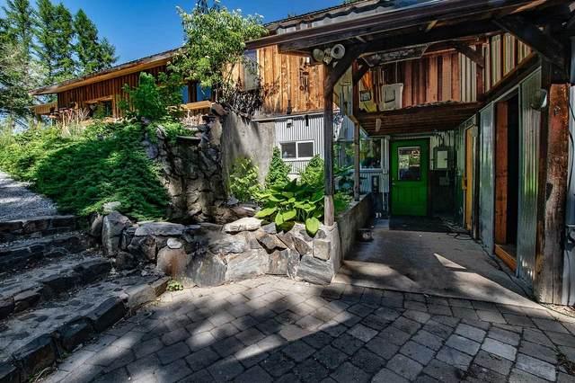 4831 Black Bear Way, Northport, WA 99157 (#202117756) :: Freedom Real Estate Group