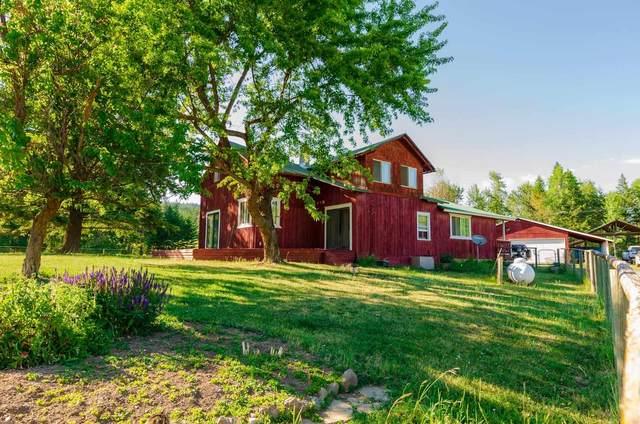 2580 Crosscut Way, Addy, WA 99101 (#202117821) :: Freedom Real Estate Group