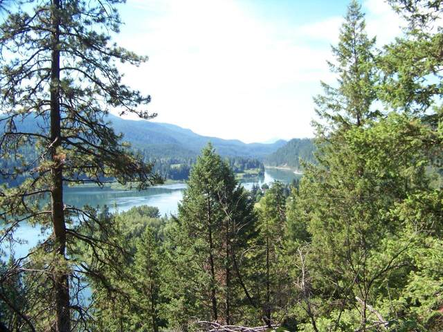 XXX Highway 31 Hwy, Ione, WA 99139 (#202117939) :: RMG Real Estate Network