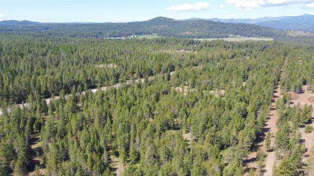 3265 Hwy 395 Hwy, Valley, WA 99181 (#202118047) :: Parrish Real Estate Group LLC