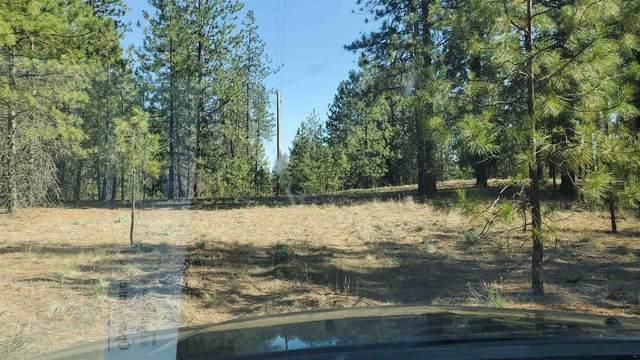 XXX N Mathias Ln, Nine Mile Falls, WA 99026 (#202118306) :: The Spokane Home Guy Group