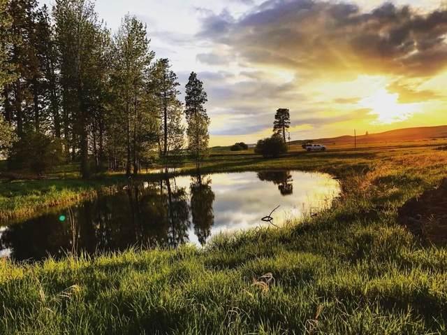 31700 S Kentuck Trails Rd, Spangle, WA 99031 (#202118312) :: The Spokane Home Guy Group