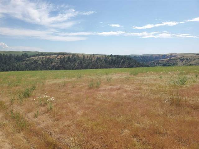 Lot 26 Red Tail Ridge Rd, Colfax, WA 99111 (#202118346) :: Parrish Real Estate Group LLC