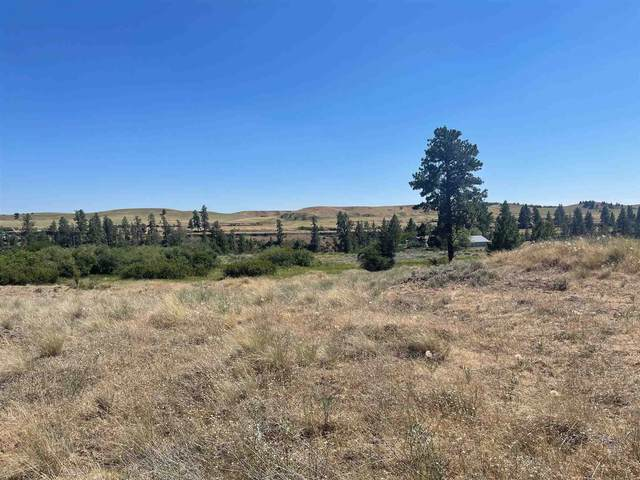 TBD S William Ave & West Pine Spring Rd, Cheney, WA 99004 (#202118365) :: Prime Real Estate Group