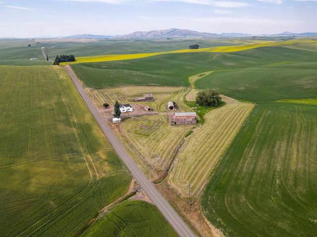 1352 Fanning Rd, Oakesdale, WA 99158 (#202118640) :: Top Agent Team