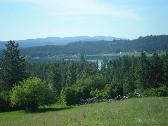 36XX1 Hoag Rd, Valley, WA 99181 (#202118763) :: Elizabeth Boykin | Keller Williams Spokane
