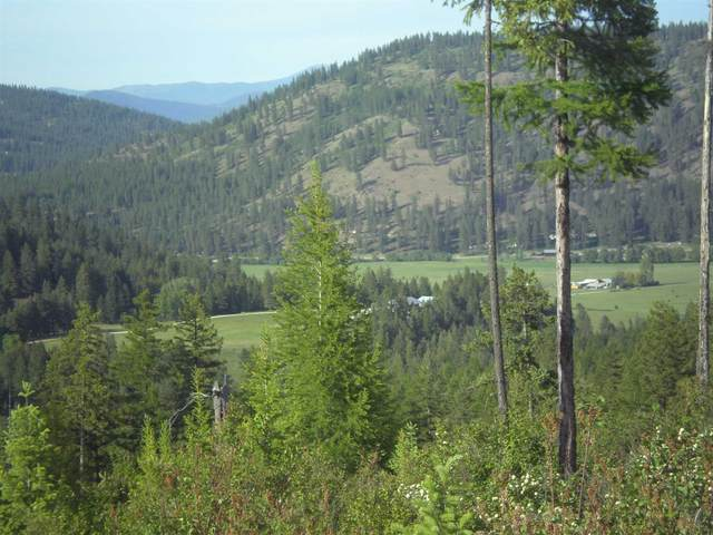 36XX3 Hoag Rd, Valley, WA 99181 (#202118766) :: Elizabeth Boykin | Keller Williams Spokane