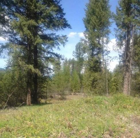 Lot 4 Wilderness Ave, Ione, WA 99139 (#202119013) :: The Spokane Home Guy Group