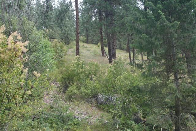 3938 E Canyon Springs Way, Loon Lake, WA 99148 (#202119129) :: Parrish Real Estate Group LLC