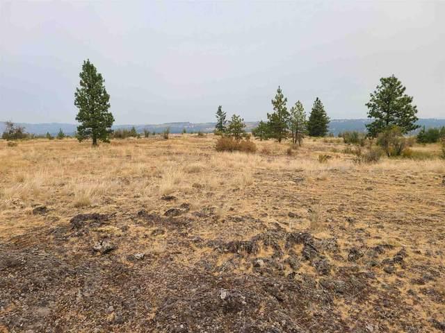 00 Indian Bluff Rd, Spokane, WA 99224 (#202119147) :: Heart and Homes Northwest