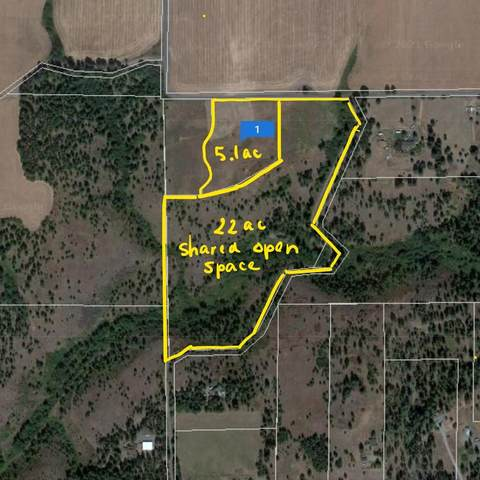 13712 S Dunn Rd, Valleyford, WA 99036 (#202119164) :: The Spokane Home Guy Group
