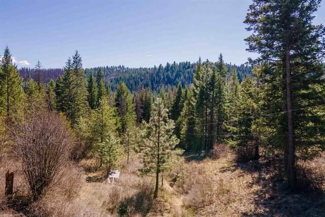 NKA Mountain Trail Ln, Newport, WA 99156 (#202119216) :: Northwest Professional Real Estate