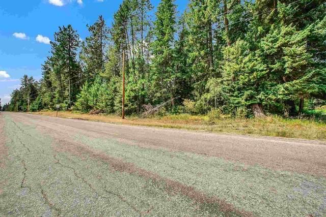 XX N Regal Rd, Elk, WA 99009 (#202119272) :: The Hardie Group