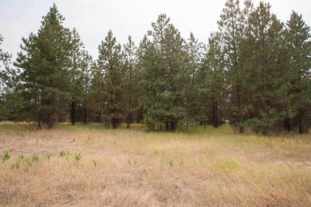 NKA Deer Park St, Deer Park, WA 99006 (#202119308) :: The Spokane Home Guy Group