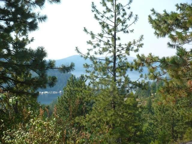 4139 N Deer Lake Rd Lot 3, Loon Lake, WA 99148 (#202119343) :: The Spokane Home Guy Group
