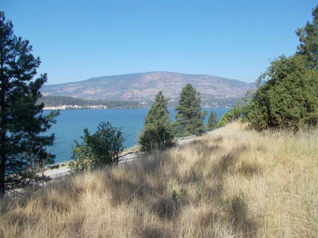 TBD Gold Edge Mine Rd, Kettle Falls, WA 99141 (#202119388) :: Bernadette Pillar Real Estate