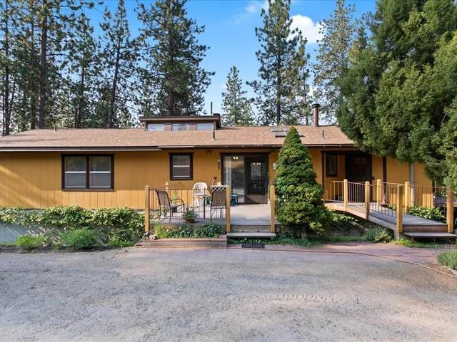 13800 E Madison Branch Rd, Mead, WA 99021 (#202119389) :: Embrace Realty Group