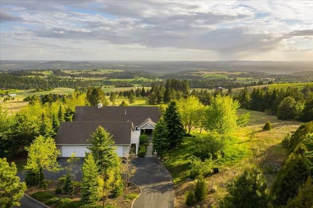 6230 E Custer Ln, Spokane, WA 99223 (#202119404) :: Top Spokane Real Estate
