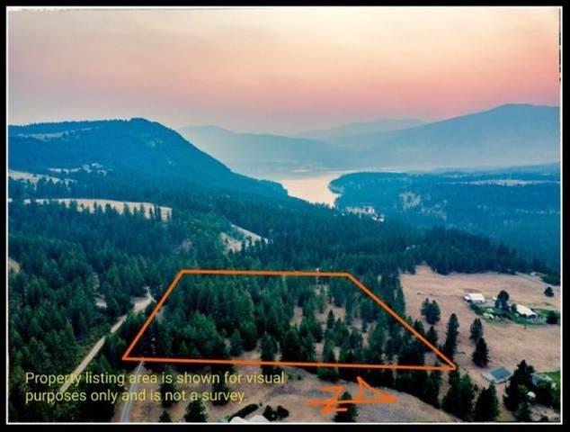 TBD Potters Rd, Kettle Falls, WA 99141 (#202119431) :: Bernadette Pillar Real Estate