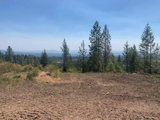 000 Ranch Rd, Deer Park, WA 99006 (#202119480) :: The Hardie Group