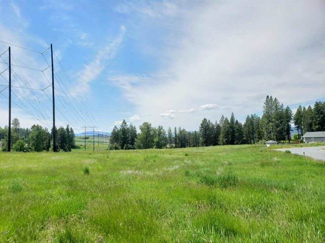 2058 Ringneck Loop, Colville, WA 99114 (#202119503) :: The Synergy Group