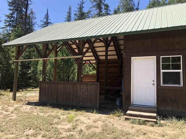81 Soggy Bottom Ln, Cusick, WA 99119 (#202119552) :: Northwest Professional Real Estate
