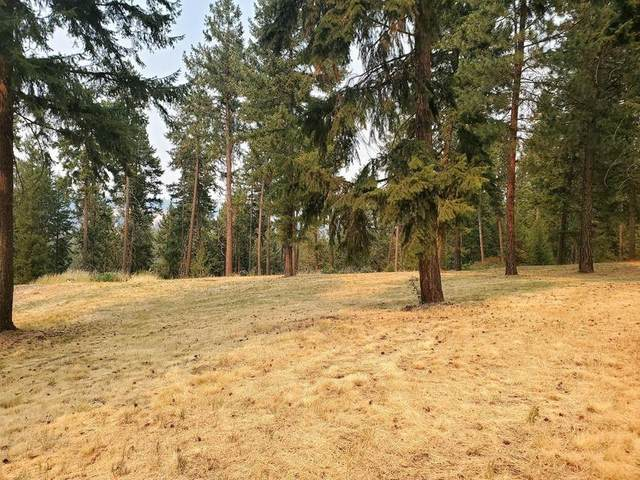 LOT C Marcus Campground Rd, Marcus, WA 99151 (#202119573) :: The Spokane Home Guy Group
