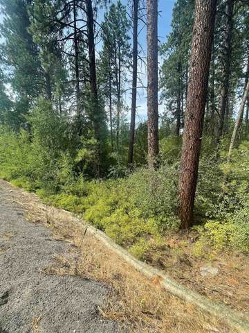 12513 S Clear Lake Rd, Cheney, WA 99022 (#202119595) :: Prime Real Estate Group