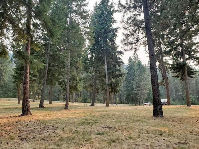 TBD Marcus Campground Rd, Marcus, WA 99151 (#202119710) :: Elizabeth Boykin | Keller Williams Spokane