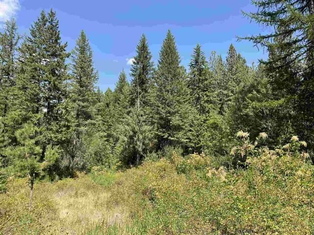 XXX Happy Hill Rd, Tumtum, WA 99034 (#202119736) :: Elizabeth Boykin   Keller Williams Spokane
