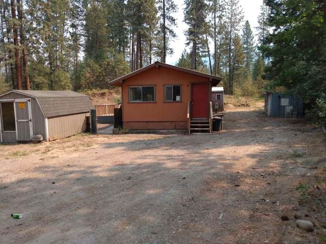 1045 Philleo Rd, Addy, WA 99101 (#202119760) :: The Synergy Group