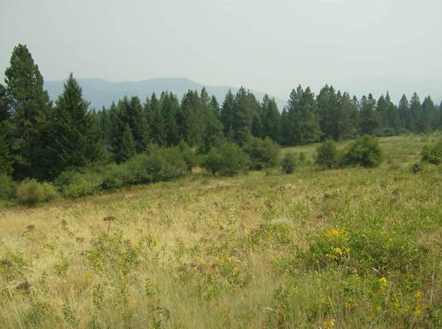 XX Harter Way, Kettle Falls, WA 99141 (#202119780) :: The Spokane Home Guy Group