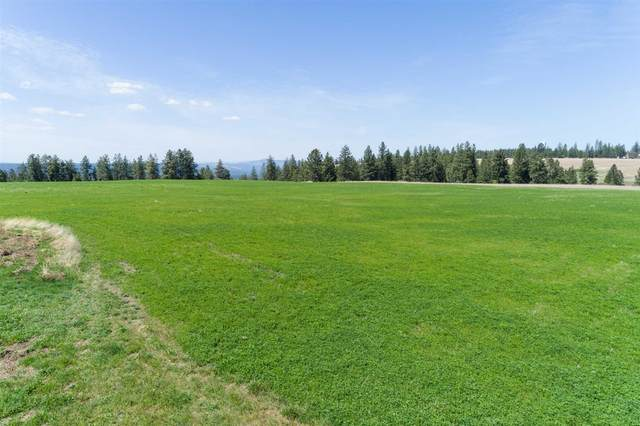 000 Unknown Ave, Wallace, WA 99208 (#202119805) :: Amazing Home Network